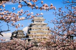 Российский турпоток в Японию показал стремительный рост